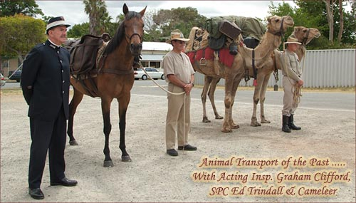 Animal Transport of the Past .....